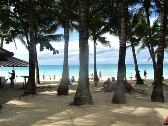 A View of the Sea Through Palm Trees at Boracay Beach