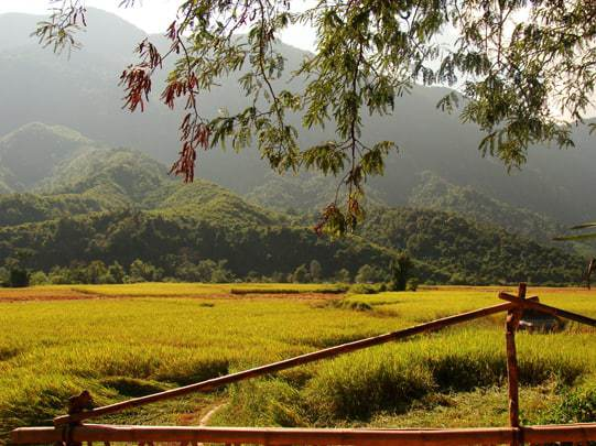 Bolaven Plateau Pakse Laos