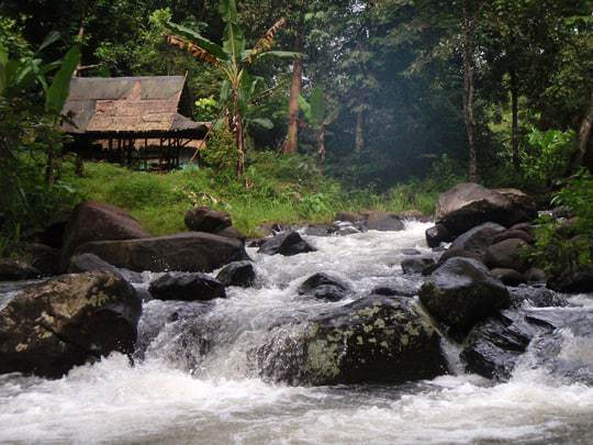 Lush Bolaven Plateau Laos