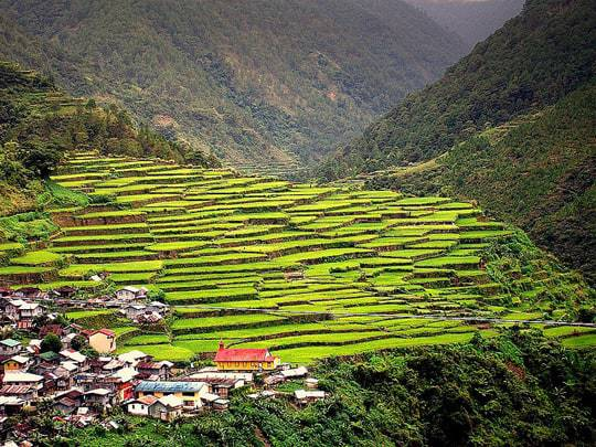 Rice terraces next to a little village in a valley in Sagada, North Luzon, Philippines
