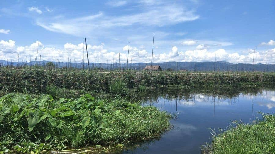 The floating gardens of Inle Lake, Shan State, Myanmar.