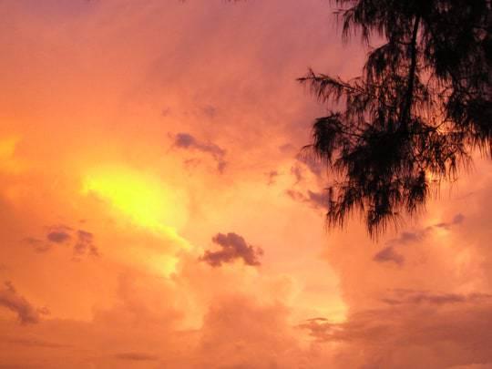 A Peach-Coloured Sky at Sunset