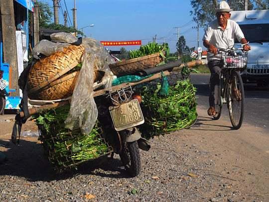 Biking in VIetnam