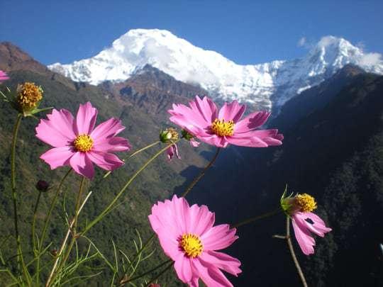 Nepal views