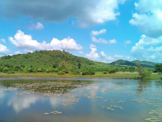 The luscious green countryside surrounding Kampot