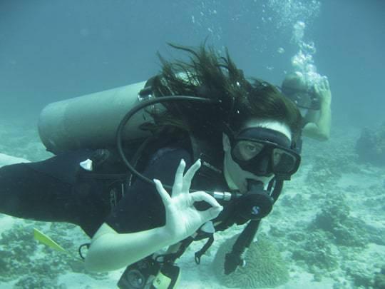 Scuba Dive Brooke Business Backpacker