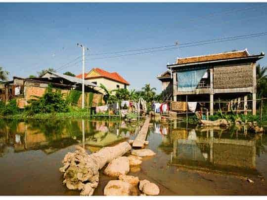 A Tree Trunk and a Plank are Used as Mini-Bridges Over The Water in Rural Cambodia