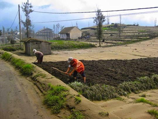 Villagers rebuilding their lives edit