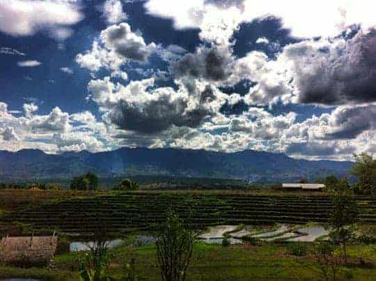 Beautiful Pai rice fields