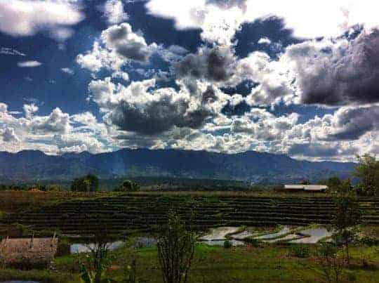 Beautiful Pai rice fields