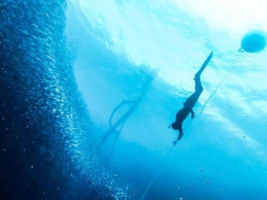 A diver in among a shoal of sardines off Panagsama Beach, Moalboal, Philippines
