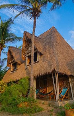 Jungle Beach Resort Best Hostel Nha Trang Vietnam Bamboo House