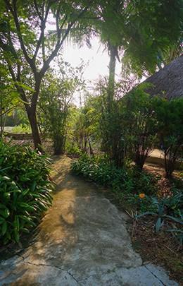 Jungle Beach Resort Best Hostel Nha Trang Vietnam Garden Path