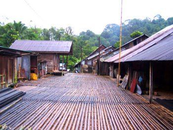 Bamboo houses in Sarawak