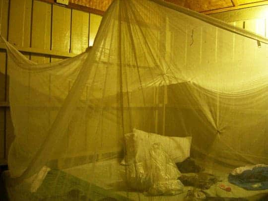 mosquito net inside bungalow