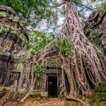 The Temples of Angkor, Cambodia