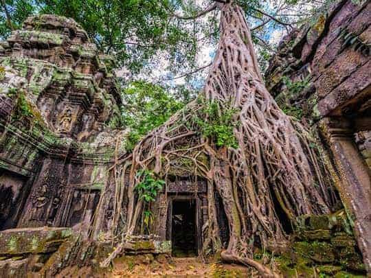 Cambodia7-AngkorTemples