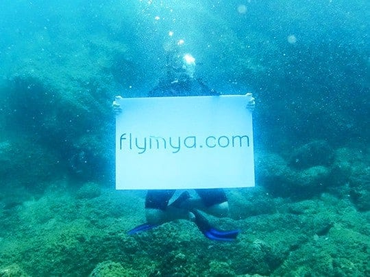 Flymya