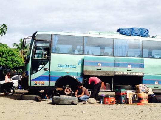 Buses Sumatra