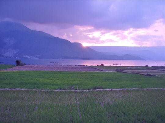Sunset over rice paddies Lake Toba