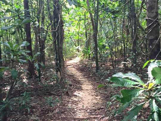 Trail KRS3