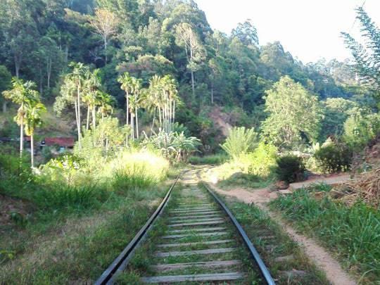 walk-along-the-tracks-to-ellas-rock