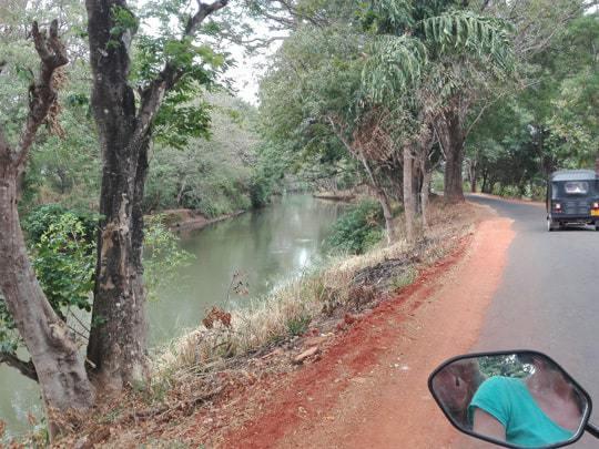 The view from a motorbike near Sigiriya.