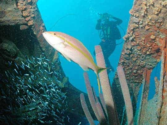 Places To Visit on Palawan Island 2-wreck-diving-coron