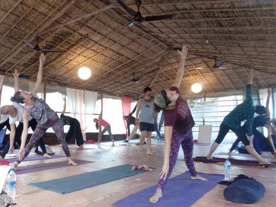 traingle pose, becoming a yoga teacher in India