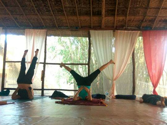 Shoulder stand, Becoming a Yoga Teacher in India