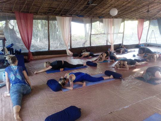 pigeon pose, becoming a yoga teacher in India
