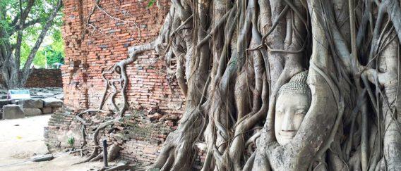 Ayutthaya (Ancient Capital)