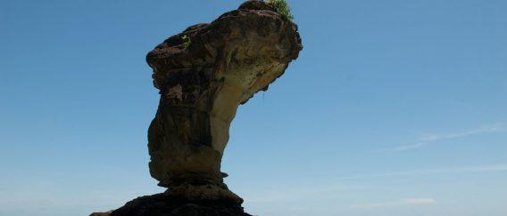 Bako National Park (Nature Near Kuching)