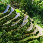 Banaue (Ancient rice terraces)