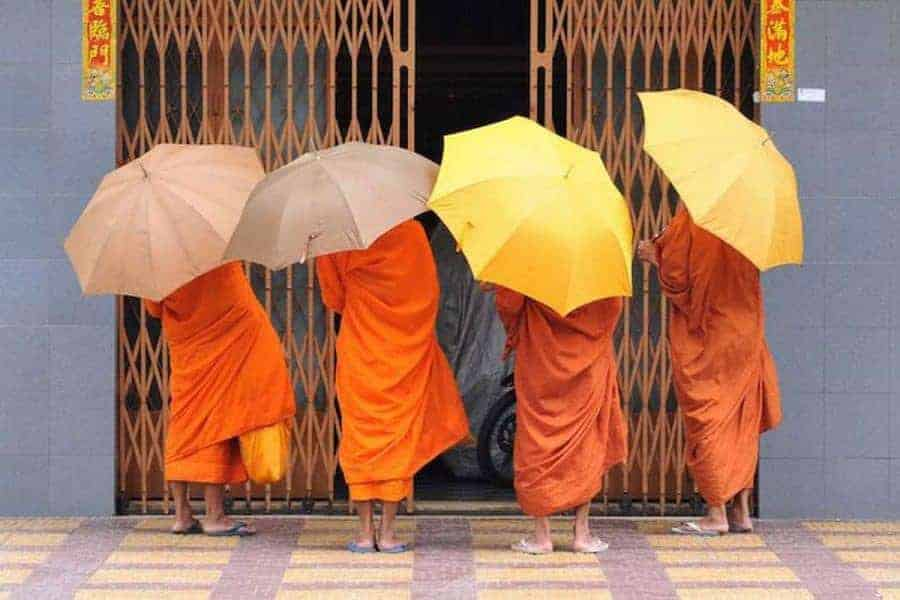 4 monks with umbrellas seen from behind - Cambodia