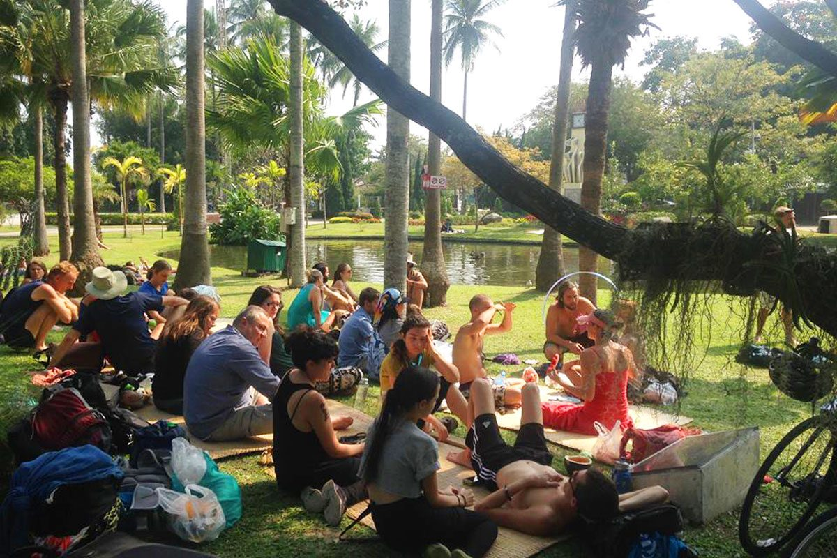 A Healthy Habit: Fruit Winter in Chiang Mai