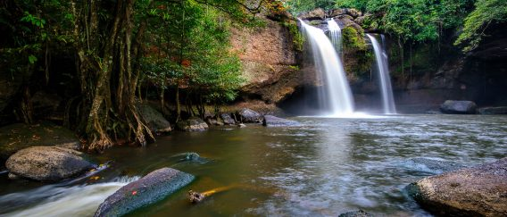 Khao Yai National Park (Waterfalls and Trekking)