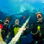 Dive Guide to Southeast Asia