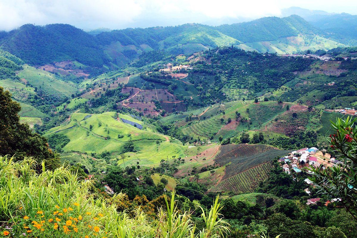 Mae Salong (Tea plantations & Heroin Warlords!)