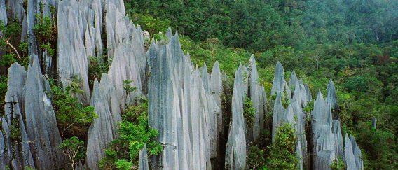 Gunung Mulu National Park (Caves Galore)