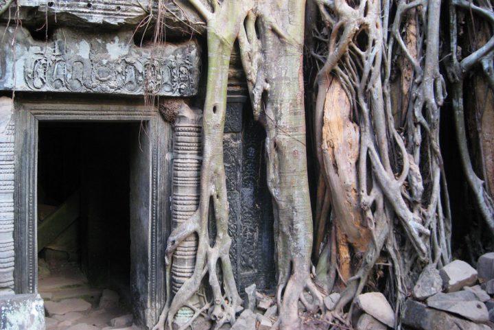 Siem Reap (Angkor Wat?)