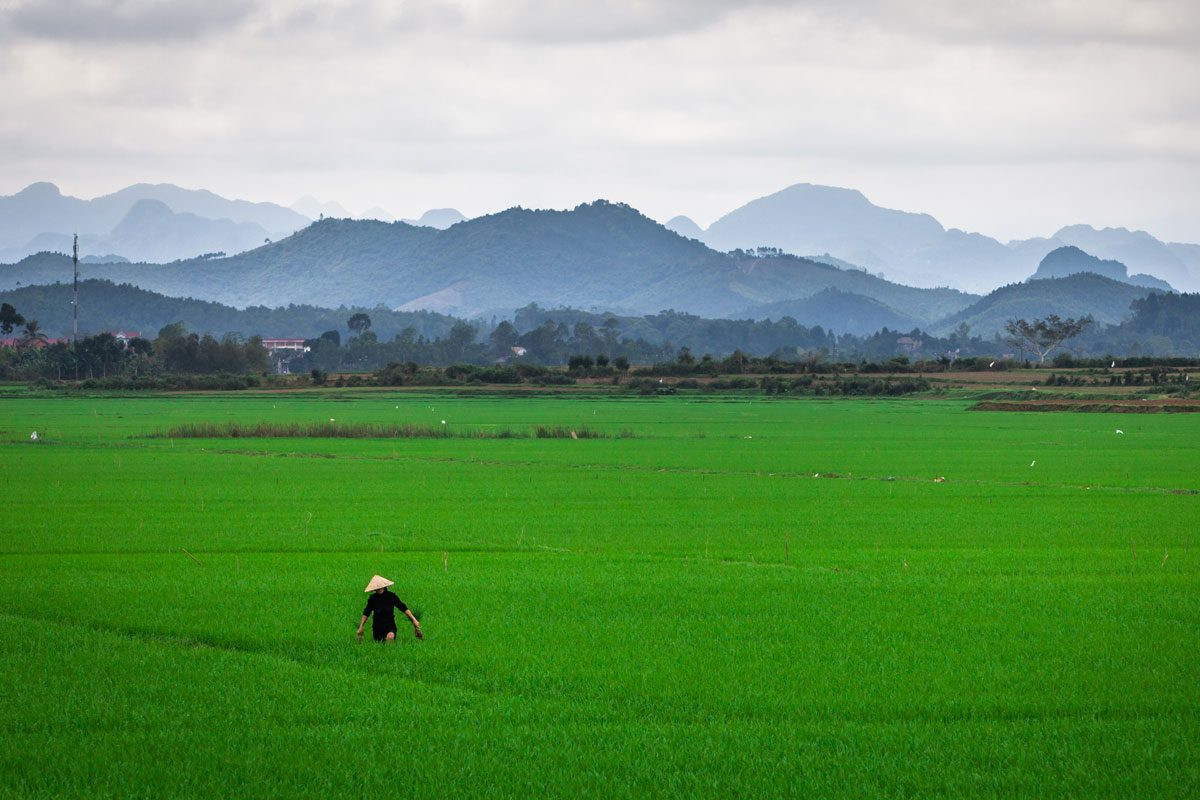 Is Vietnam the Most Diverse Country For Backpackers in SE Asia?