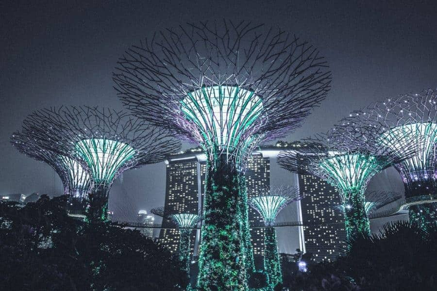 Futuristic trees at Gardens by the Bay, Singapore