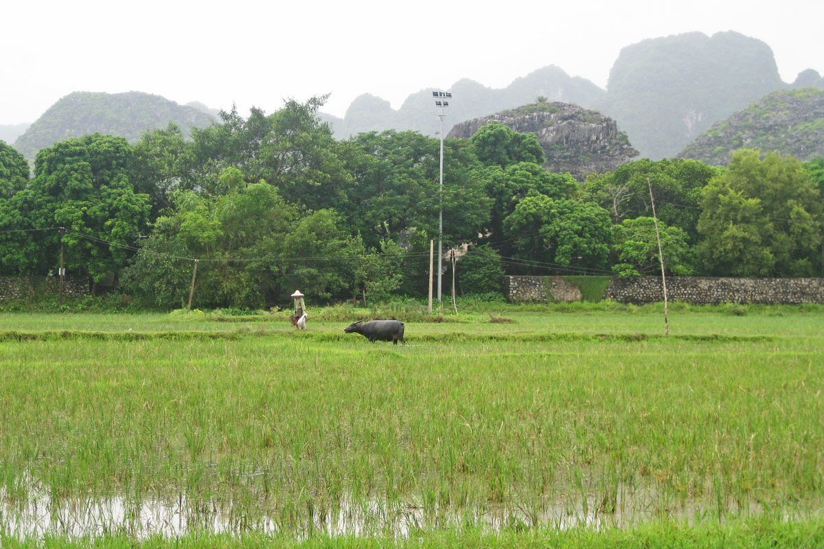 The Real North Vietnam, Motorbiking to Ninh Binh Province