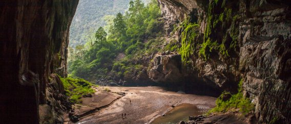 Phong Nha-Ke Bang National Park (Trekking & Caves)