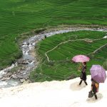 SaPa (Treks, Rice Terraces & Hill Tribes)