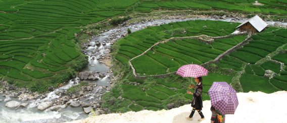 SaPa (Treks, Rice Terraces & Hill Tribes)
