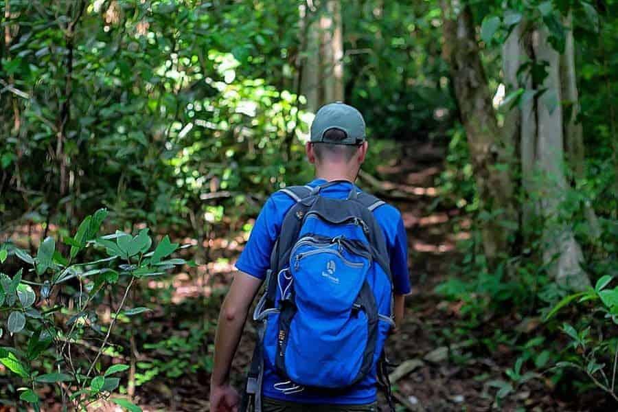 Trekking,-Cat Tien-National-Park,-Vietnam