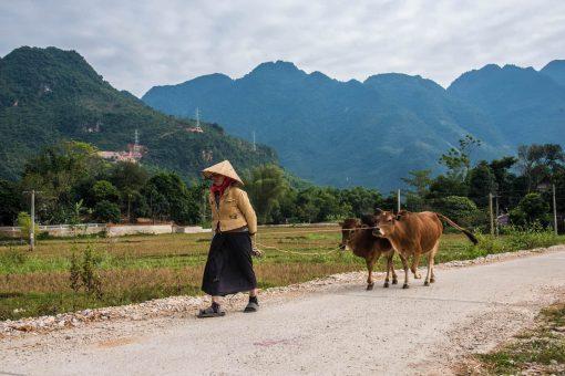 Mau Chau Valley, Vietnam.