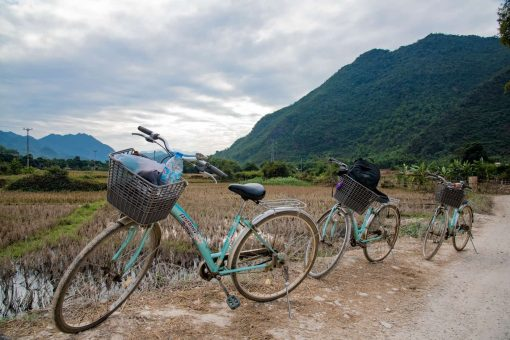 Cycling through the rice fields of Mai Chau Valley.